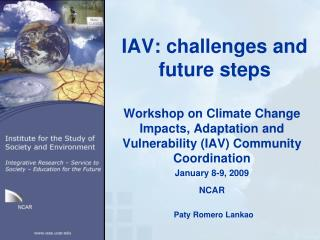 IAV: challenges and future steps