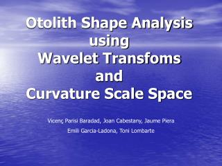 Otolith Shape Analysis using  Wavelet Transfoms and Curvature Scale Space