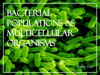 Bacterial Populations as Multicellular Organisms