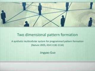 Two dimensional pattern formation