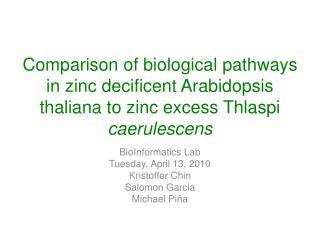 BioInformatics Lab Tuesday, April 13, 2010 Kristoffer Chin Salomon Garcia Michael Piña