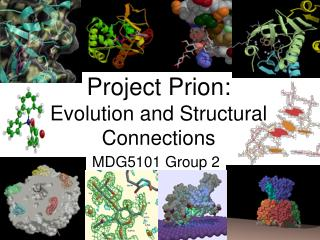 Project Prion:  Evolution and Structural Connections