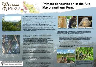A  project sponsored by the Conservation Working Party of  the