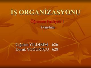 İŞ ORGANİZASYONU