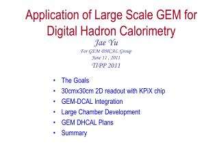 Application of Large Scale GEM for Digital  Hadron Calorimetry
