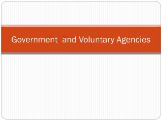 Government   and Voluntary Agencies