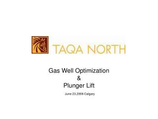 Gas Well Optimization &  Plunger Lift   June 23,2008 Calgary