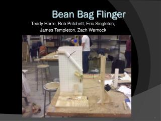 Bean Bag Flinger