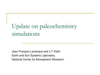 Update on paleochemistry simulations