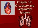 Chapter 37: Circulatory and Respiratory Systems
