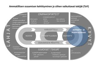 Ammatillisen  osaamisen kehittyminen  ja  siihen  vaikuttavat  tekijät ( TaY )