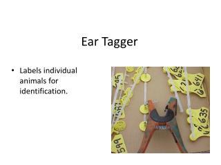 Ear Tagger