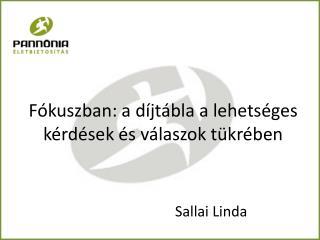 Fókuszban: a díjtábla a lehetséges kérdések és válaszok tükrében Sallai Linda