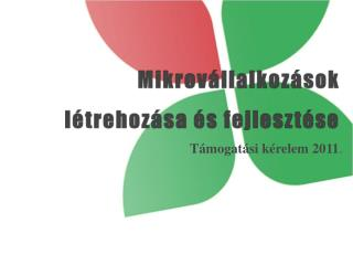 Mikrovállalkozások  létrehozása és fejlesztése