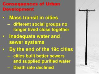 Consequences of Urban Development