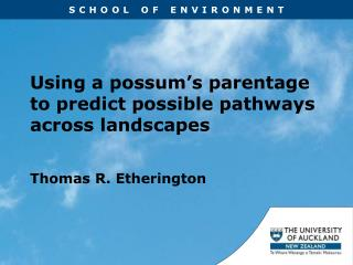 Using a possum's parentage to predict possible pathways across landscapes