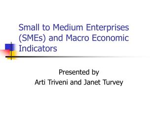 Small to Medium Enterprises (SMEs) and Macro Economic Indicators