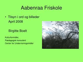 Aabenraa Friskole