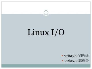 Linux I/O