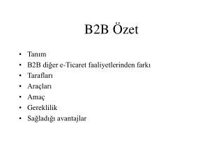 B2B Özet