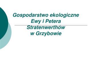 Gospodarstwo ekologiczne  Ewy i Petera Stratenwerthów  w Grzybowie