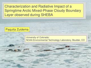Characterization and Radiative Impact of a  Springtime Arctic Mixed-Phase Cloudy Boundary