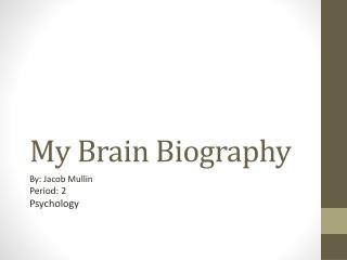 My Brain Biography