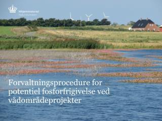 Forvaltningsprocedure for potentiel fosforfrigivelse ved vådområdeprojekter
