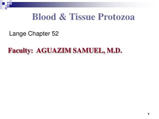 Blood & Tissue Protozoa Lange Chapter 52 Faculty:  AGUAZIM SAMUEL, M.D.