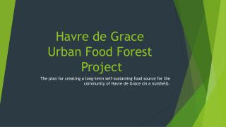 Havre de Grace Urban Food Forest  Project