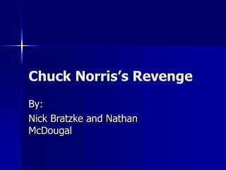 Chuck Norris's Revenge