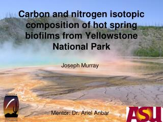 Carbon and nitrogen isotopic composition of hot spring biofilms from Yellowstone National Park