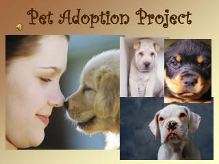 Pet Adoption Project