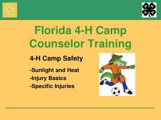 Florida 4-H Camp Counselor Training