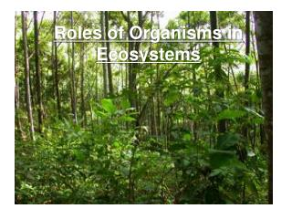 Roles of Organisms in Ecosystems