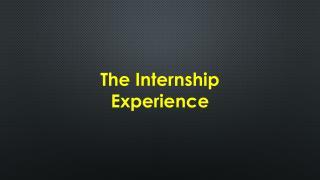 The Internship Experience