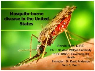 Mosquito-borne disease in the United States