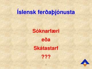 Íslensk ferðaþjónusta