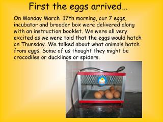 First the eggs arrived…
