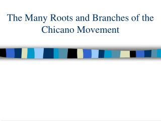 The Many Roots and Branches of the Chicano Movement