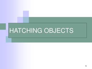HATCHING OBJECTS