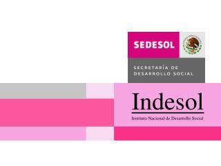 Indesol Instituto Nacional de Desarrollo Social