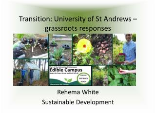 Transition: University of St Andrews – grassroots responses