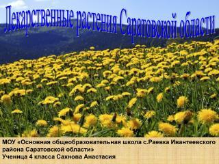 Лекарственные растения Саратовской области