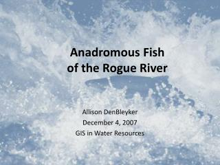 Anadromous Fish  of the Rogue River