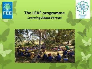 The LEAF programme Learning About Forests