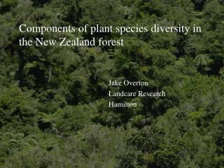 Components of plant species diversity in the New Zealand forest
