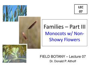 FIELD BOTANY – Lecture 07 Dr. Donald P. Althoff