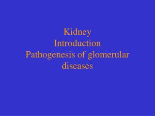 Kidney Introduction Pathogenesis of glomerular diseases