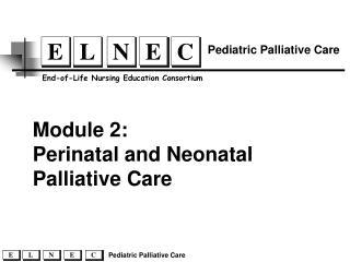Perinatal and Neonatal Palliative Care